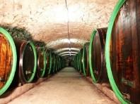 Mönchhof - Jednodenní vinařský zájezd - Last Minute a dovolená