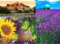 Báječná Provence Dle programu