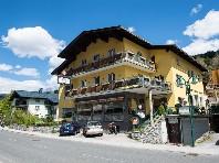 Pension Musikantenwirt - hotel