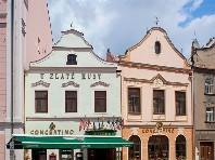 Hotel Concertino Zlatá Husa - Last Minute a dovolená