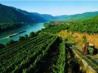 Romantické údolí Wachau, na kole, lodí, pěšky - autobusem