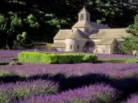 Za sluncem a vůněmi francouzské Provence - autobusem