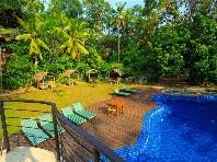 Hotel Jungle Village - hotely