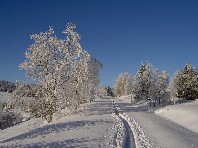 Šumava na sněžnicích - Last Minute a dovolená