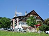 Gasthof - Pension Kirchenwirt - ubytování v soukromí