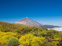 Tenerife - Fly and Drive  Dle programu