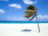 Barcelo Aruba Hotel  Aruba All inclusive