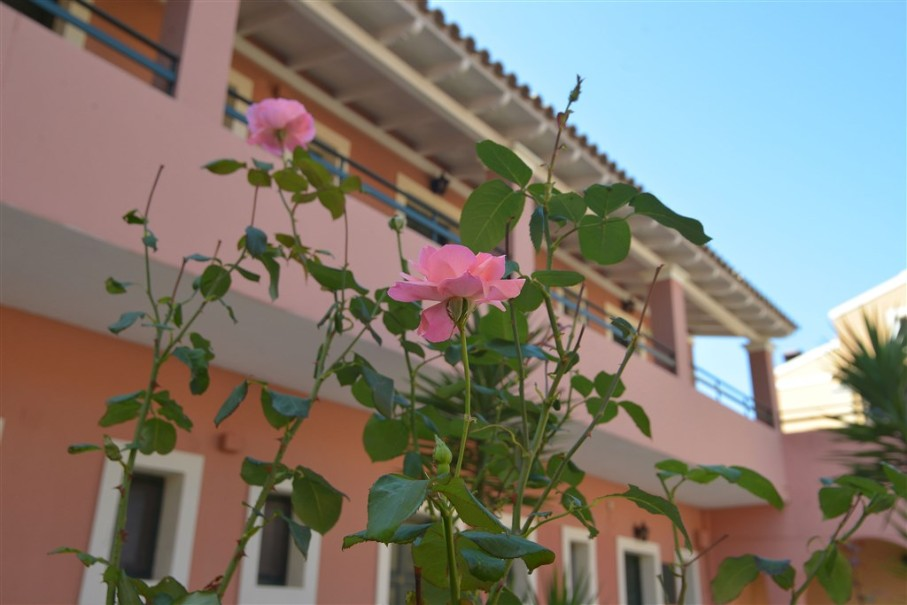Summertime Hotel Apartments (fotografie 7)