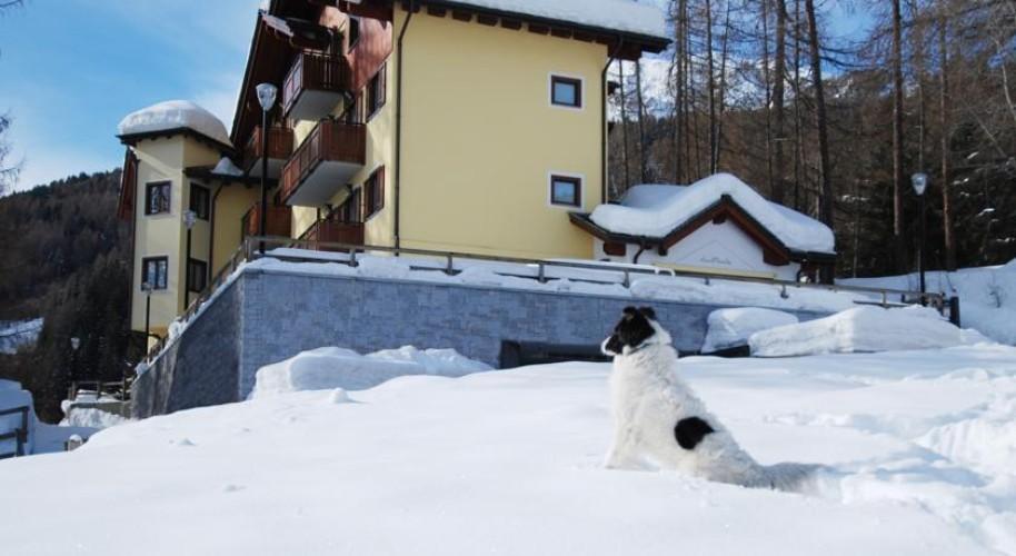 Rezidence Stelvio (fotografie 8)