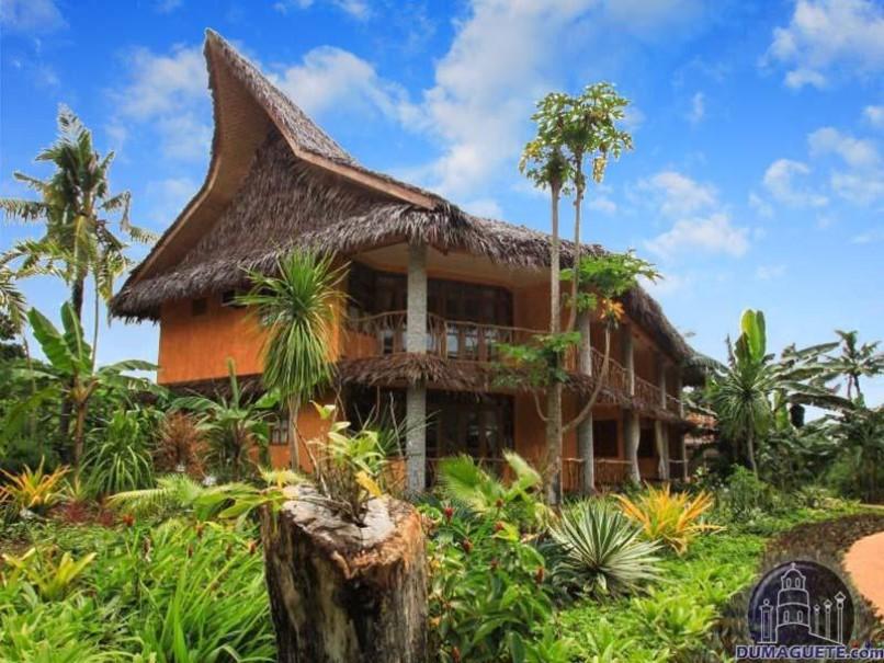 Coco Grove Beach Resort (fotografie 2)