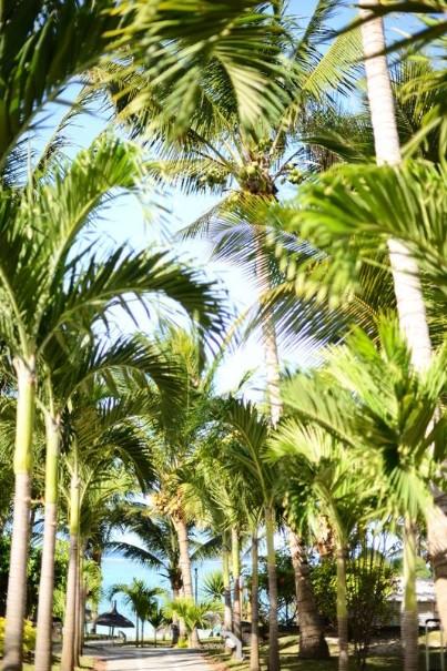 Hotel Veranda Palmar Beach (fotografie 2)