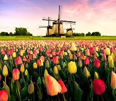 Benelux - Poznávací zájezd do Holandska, Belgie a Lucemburska - Historické klenoty zemí Beneluxu