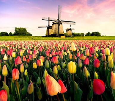 Benelux - Poznávací zájezd do Holandska, Belgie a Lucemburska - Historické klenoty zemí Beneluxu (hlavní fotografie)
