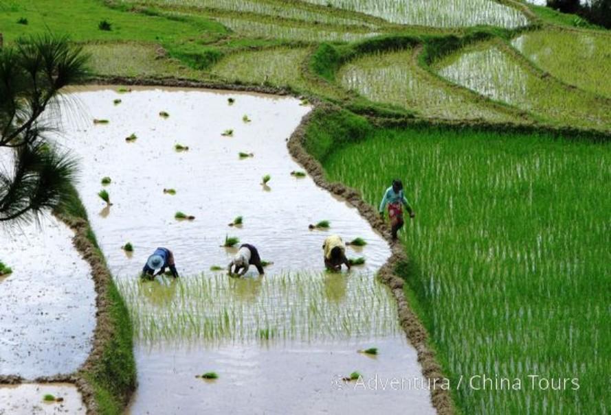 Bhútán s turistikou v zeleném Himálaji (fotografie 13)