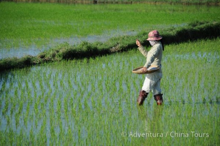 Vietnam – Velká cesta (fotografie 9)