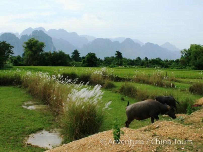 Thajsko, Laos, Kambodža 2020 (fotografie 14)