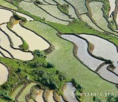 Vietnam – velká cesta