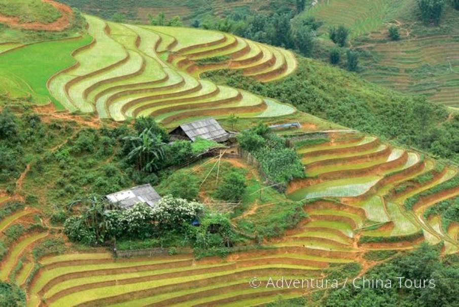 Vietnam – Velká cesta (fotografie 3)
