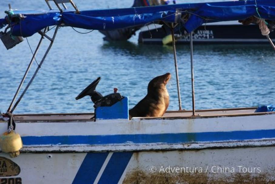 Ekvádor a Galapágy (fotografie 8)