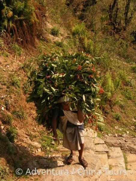 Treking Údolím šerpů až k Everestu (fotografie 9)