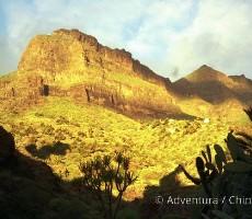Kanárské ostrovy – Tenerife, La Palma a Gomera