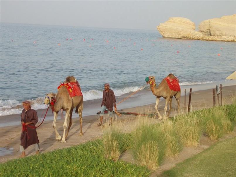 Shangri-La Barr Al Jissah Resort and Spa (fotografie 21)