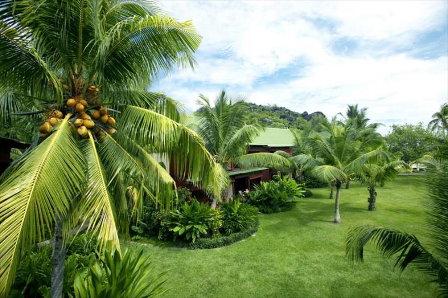 Paradise Sun Hotel (fotografie 46)
