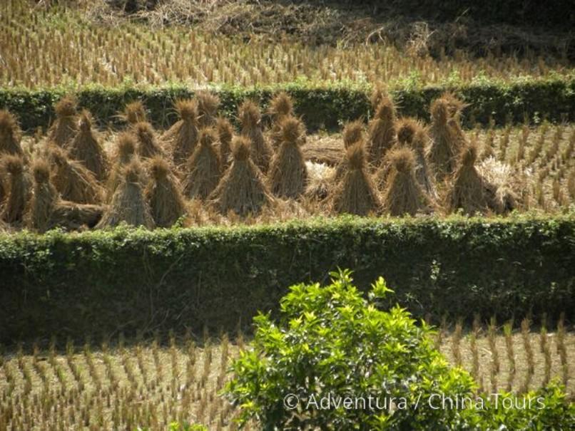 Vietnam – Velká cesta (fotografie 2)