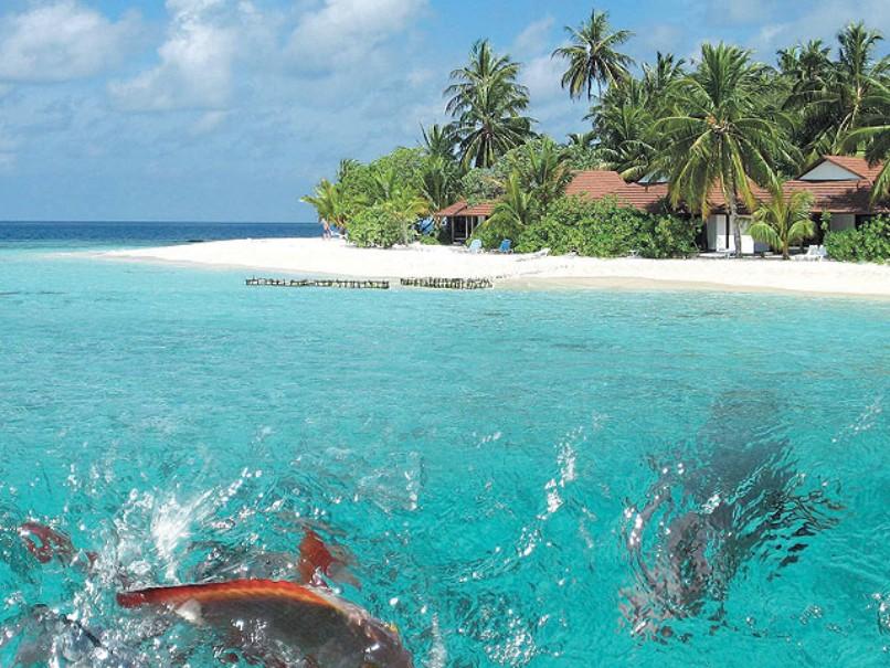 Hotel Holiday Island (fotografie 19)