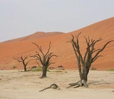 Velký okruh Namibií
