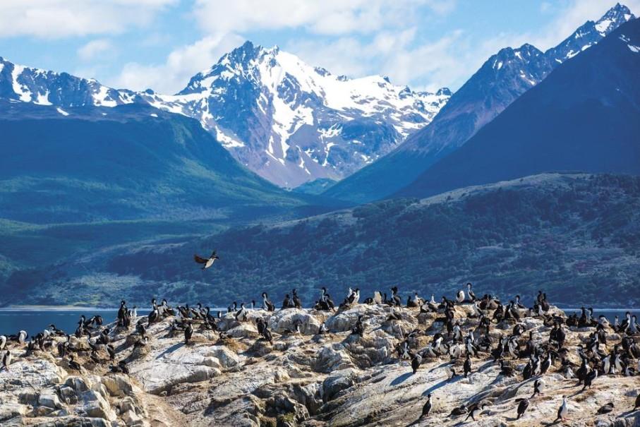 Patagonie a Ohňová země (fotografie 5)