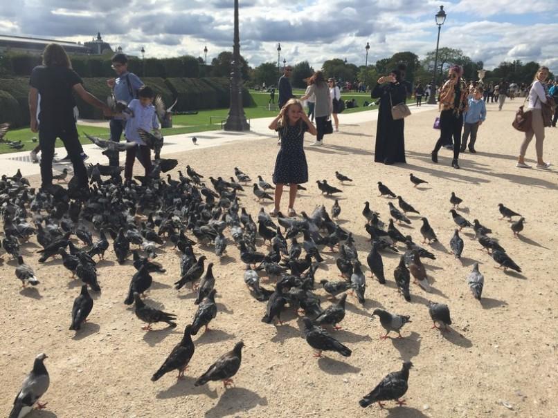 Romantická Paříž a Versailles (fotografie 99)