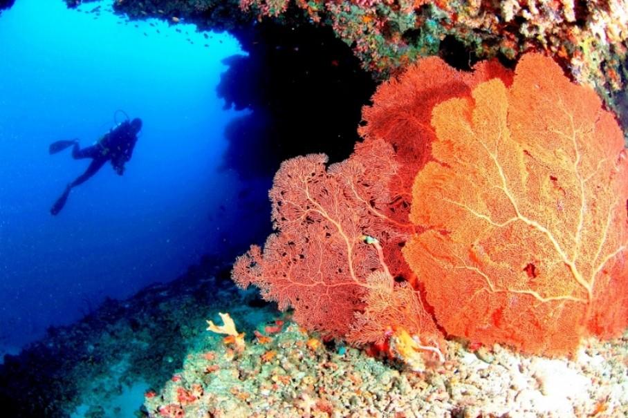Medhufushi Island Resort (fotografie 9)