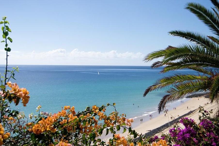 Hotel SBH Club Paraíso Playa (fotografie 7)