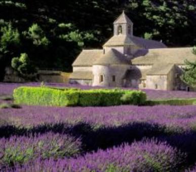 Za sluncem a vůněmi francouzské Provence