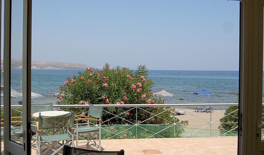 Studia Elpida (fotografie 21)