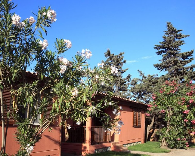 Villaggio Club Degli Amici (fotografie 1)