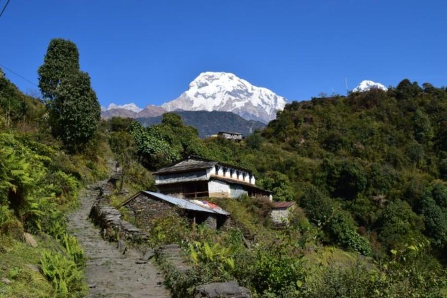 Nepál a trek v Himalájích (expedice) (fotografie 11)