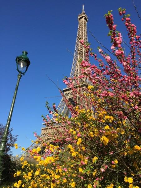 Paříž a Versailles od A do Z – hotely Campanille a Premiere (fotografie 29)