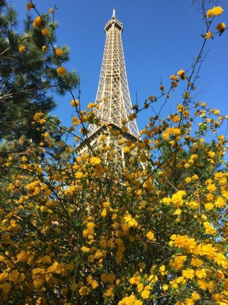 Paříž a Versailles od A do Z – hotely Campanille a Premiere (fotografie 28)