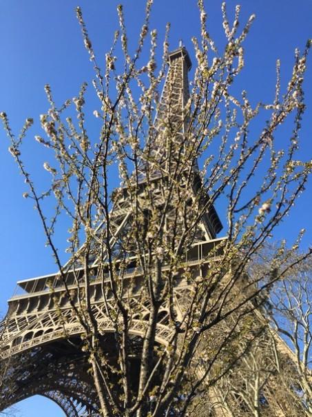 Paříž a Versailles od A do Z – hotely Campanille a Premiere (fotografie 22)