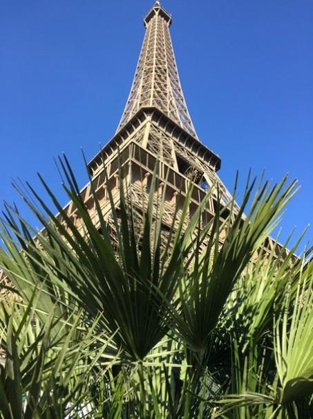 Paříž a Versailles od A do Z – hotely Campanille a Premiere (fotografie 26)