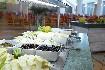 Hotel Labranda Riviera Marina (fotografie 7)