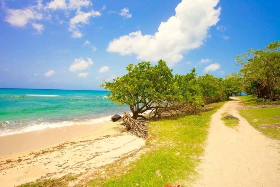 Karibea Sainte Luce Hotel - Caribia (fotografie 6)
