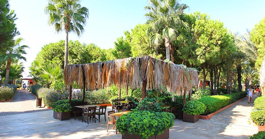 Hotel Club Turtas (fotografie 5)