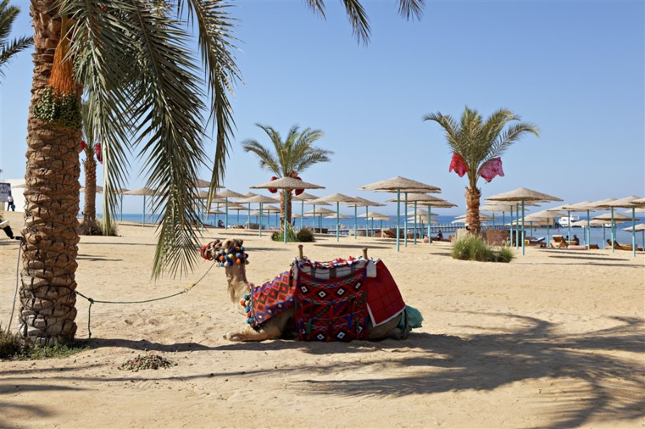Hotel Three Corners Sunny Beach (fotografie 18)
