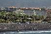 Hotel Turquesa Playa (fotografie 17)