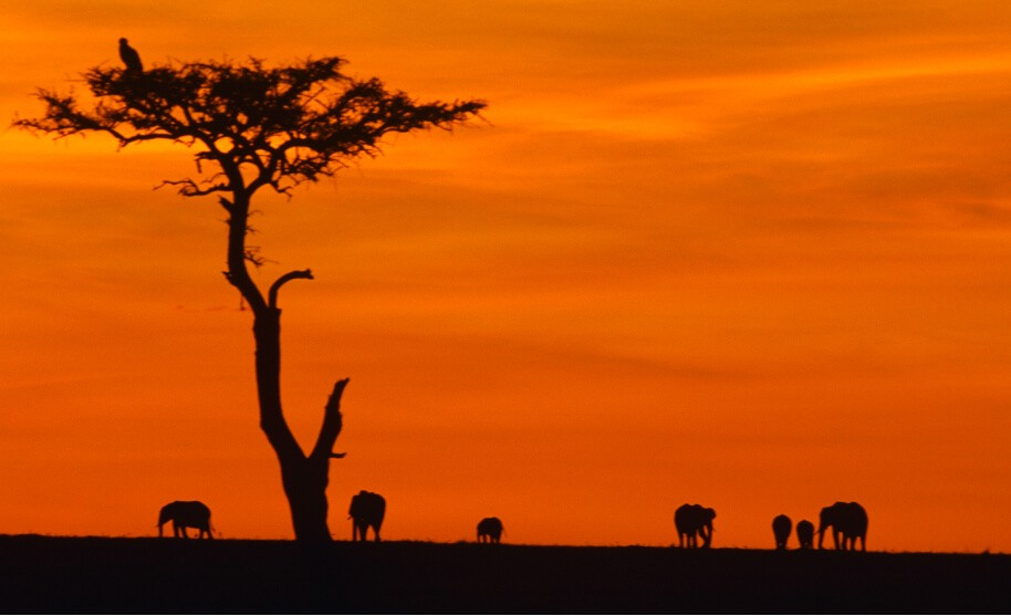 Západ slunce v Keni v Africe