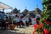 Basilicata pro seniory 55+ - Hotel Villaggio Akiris (fotografie 3)