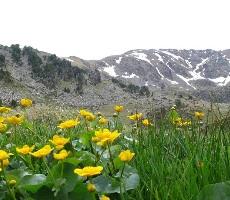 Poznávací zájezd národní parky Andorry